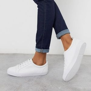 Brand new dunn lace up sneakers